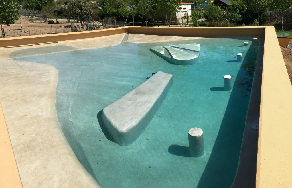 La tortugas de Atocha estrenan piscina revestida con Accent Quartz